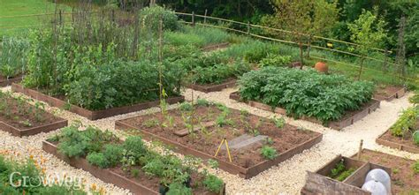 plan  vegetable garden design   garden layout