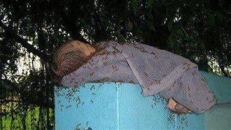 duh kejam banget  melakukannya bayi  dibuang  atas pagar  dikerubungi semut merah  seru