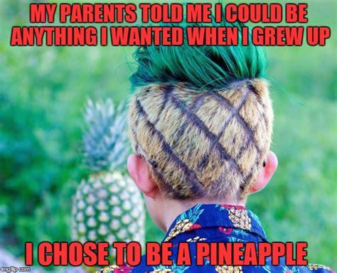 Pineapple Memes - pineapple meme related keywords pineapple meme long tail keywords keywordsking