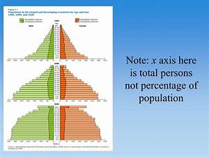 PPT - The population pyramid displays the age and sex ...