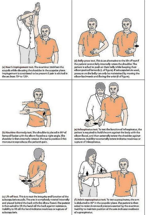 Rotator cuff tests. | Hand therapy, Physical therapy ...