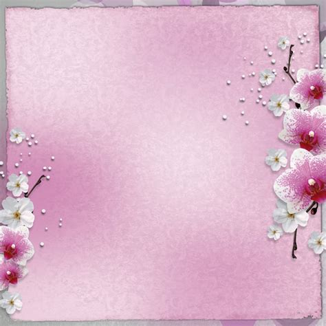 Border Picture Hd by Hd Flower Border Pictures Millions Vectors
