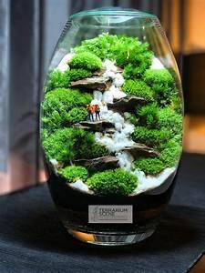 Bonsai Im Glas : pin by terrariumscene on moss gardens moss garden terrarium scene glass garden ~ Eleganceandgraceweddings.com Haus und Dekorationen