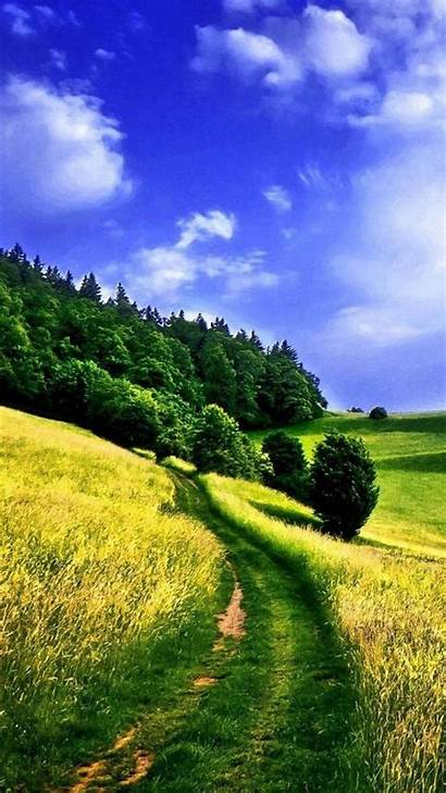 Nature Iphone Wallpapers Background Path Way Apple