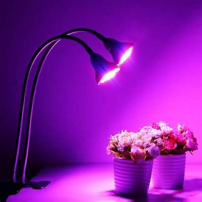 Led Grow Lights Desk Dual Lamp Head
