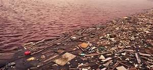 essays on water pollution efficient market hypothesis and essays on water pollution