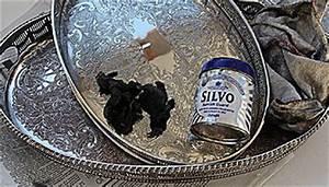 Wie Reinigt Man Silber : wie reinigt man angelaufenes silber wissen ~ Markanthonyermac.com Haus und Dekorationen