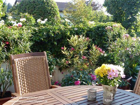 Bambus Für Balkon by Winterharte K 252 Belpflanzen Terrasse 80 Images Bambus