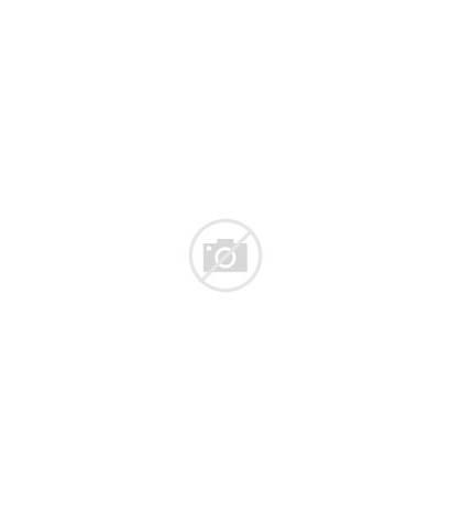 Plant Clipart Pot Clip Transparent Banner Monstera
