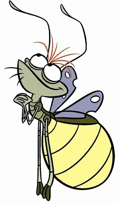 Firefly Ray Disney Frog Princess Characters Drawings