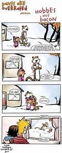 Calvin And Hobbes, Add The Bacon : Krulwich Wonders... : NPR