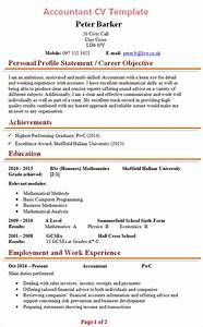 Professional cv accountant sample