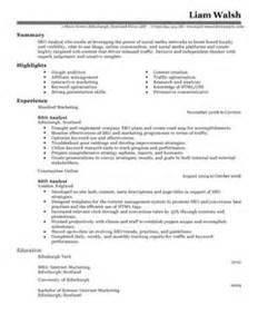resume 3g optimization engineer seo cv template search engine optimization cv exles livecareer