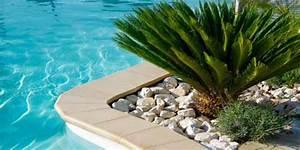 Plantes D Extérieur Pour Terrasse : plante verte exterieur jardin photos de magnolisafleur ~ Dailycaller-alerts.com Idées de Décoration
