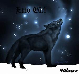Black Wolf Howling At The Red Moon