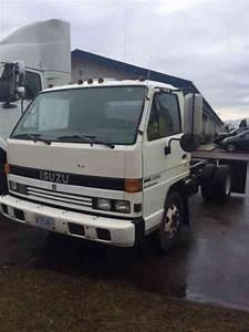 Isuzu  1995    Van    Box Trucks