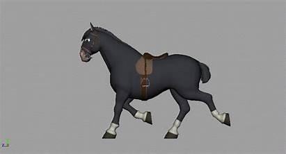 Horse Trot Animating Jess Morris Quads Animation