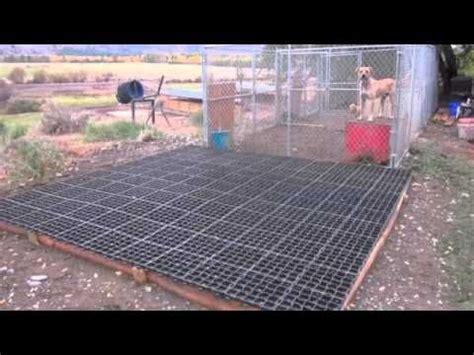 Outdoor Kennel Flooring Ideas by Best 20 Kennel Flooring Ideas On Outdoor