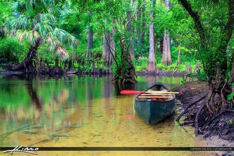 loxahatchee river canoe   shore
