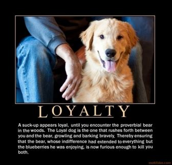 dog loyalty quotes quotesgram