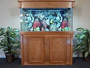 top      gallon fish tank stand   review