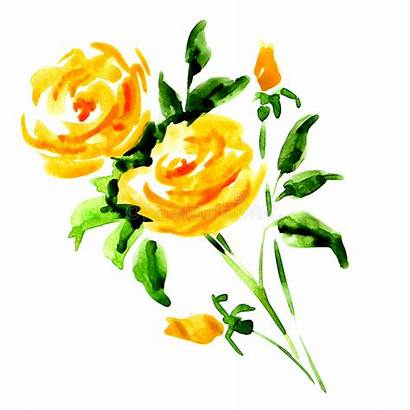 Yellow Rose Bouquet Clipart Watercolor Roses Isolated