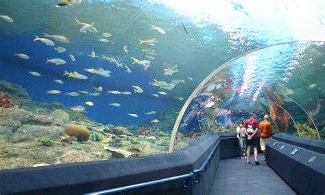 singapore underwater world ticket price check out singapore underwater world ticket price