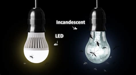 patio lights that don t attract bugs 28 images this
