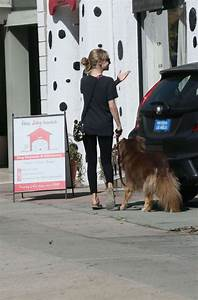 Amanda seyfried in spandex at the dog house for daycare for The dog house daycare