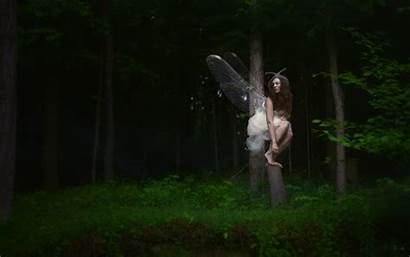 Woods Fairy Among Manipulation Trees Forest Fantasy