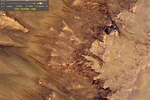 NASA Reveals Life On Mars - Pics about space