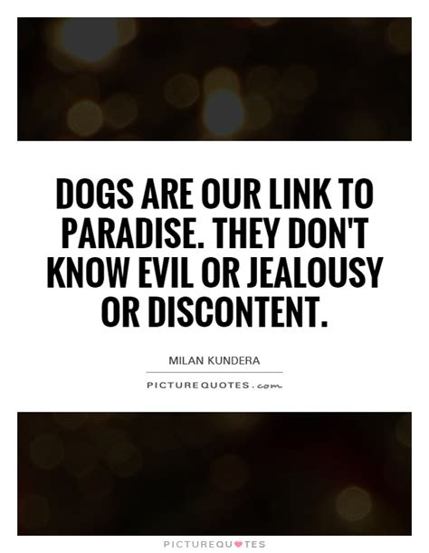 jealousy quotes jealousy sayings jealousy picture