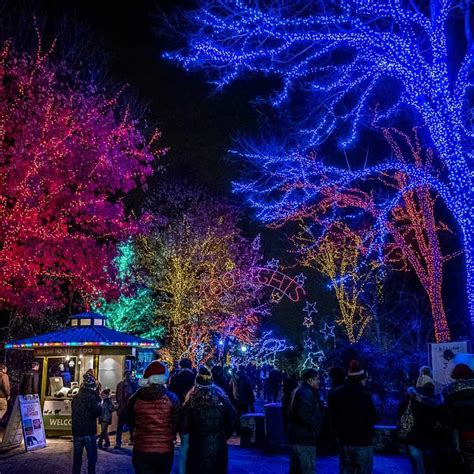 washington dc holiday light winter lights christmas zoo displays national tree things zoolights smithsonian outdoor events led decorating entrance