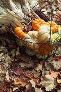 Wonderful, Basket, Display, For, Home, Decor, In, Fall