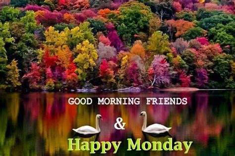good morning happy monday wishes quotes images  whatsappfacebook holiday wishes