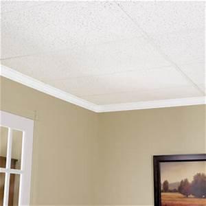 Installer Faux Plafond : ceiling tile rona ~ Melissatoandfro.com Idées de Décoration