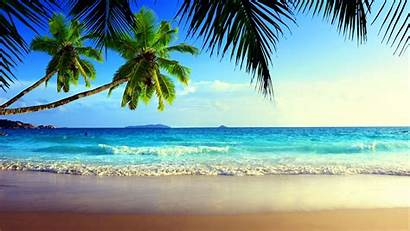 Beaches Nature Sea Desktop Wallpapers Palm Vacation