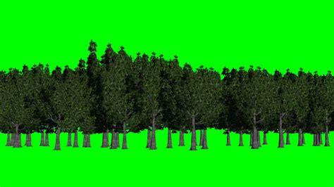 forest green screen background green  blue