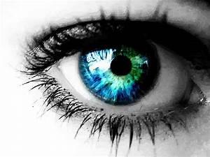 Beautiful Eye Vector Art  U0026 Graphics