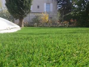 Acheter Gazon Artificiel : acheter du gazon synthetique discount pas cher pour jardin ~ Edinachiropracticcenter.com Idées de Décoration