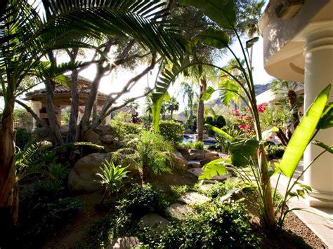tropical landscape photo page hgtv