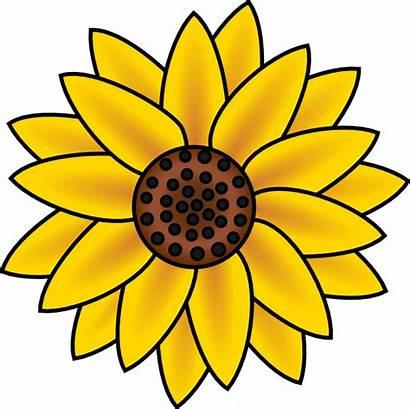 Sunflower Clip Clipart Vector Sun Clker Hi