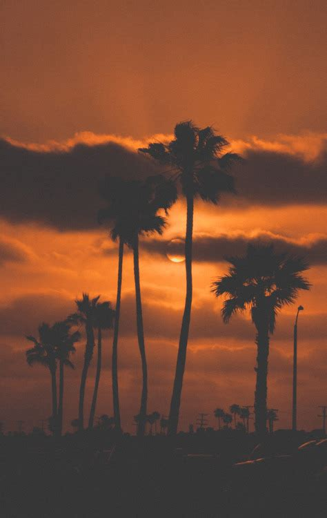 dark orange california sunset pictures   images