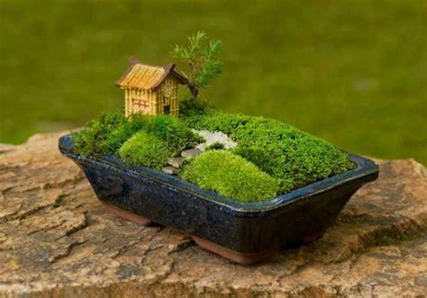idee deco chambre romantique choisir une jardin miniature pour relaxer