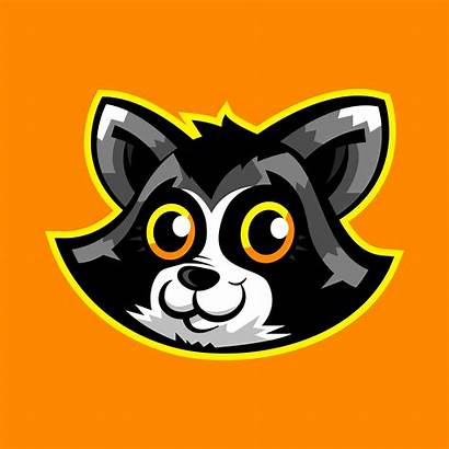 Raccoon Vector Face Animal Clipart Vectors Graphics