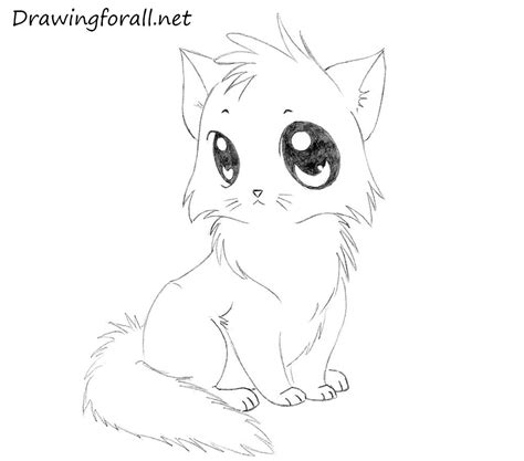 draw  cartoon cat  kids drawingforallnet