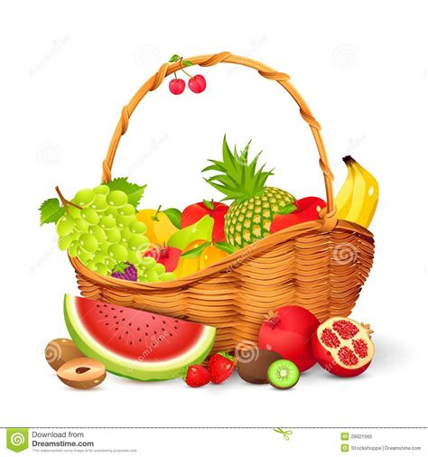 corbeille de fruits photo stock image 29021560
