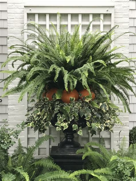outdoor decorating outdoor fall decor inspiration from ppt hello lovely
