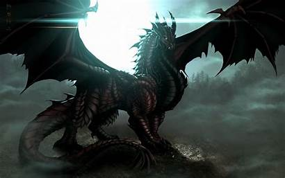 Dragon Wallpapers Resolution Desktop Laptop Amazing Android