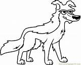 Pound Coloring Puppies Woof Bark Tooth Coloringpages101 Cartoon sketch template